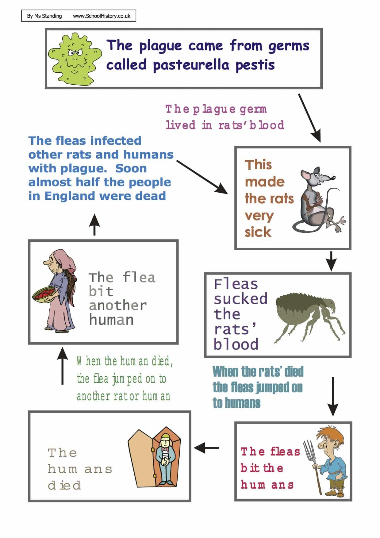 Diagram Of The Great Plague Worksheet  9 Pdf