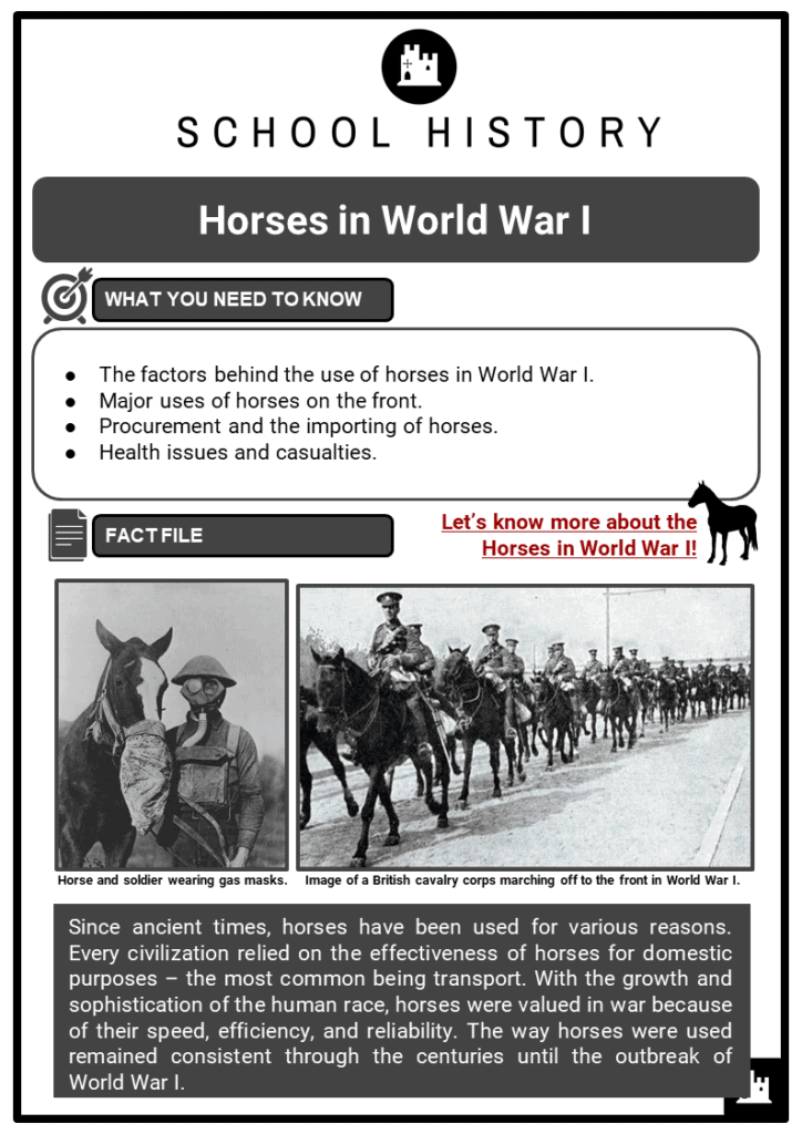 Horses in World War I Resource Collection 1