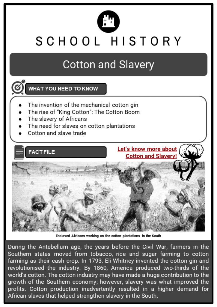 Cotton and Slavery Resource Collection 1
