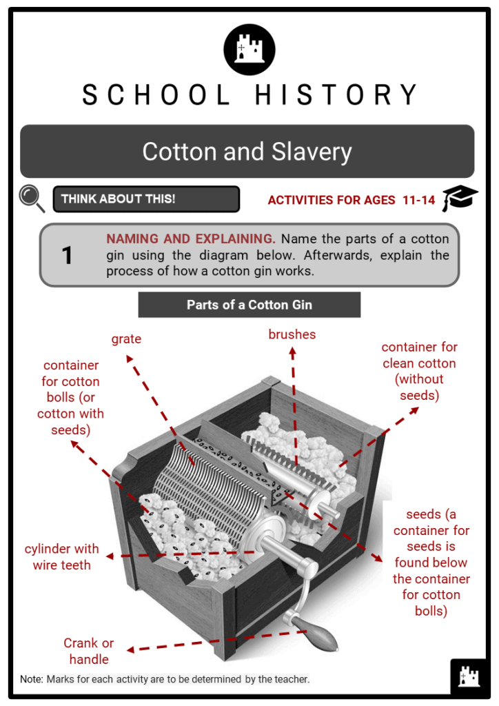 Cotton and Slavery Student Activities & Answer Guide 2